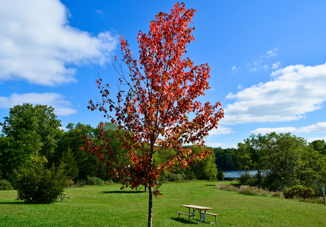 Seven Lakes State Park, Fall